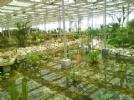 杨柳青博览园