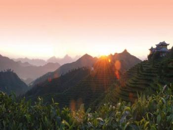 再雇面包车或公车从凌云县到茶山金字塔景塔景区