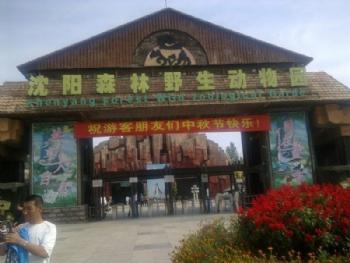 >> 沈阳森林野生动物园景点点评  景点地址:沈阳市东陵区沈阳棋盘山
