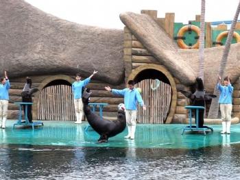 秦皇岛野生动物园+乐岛