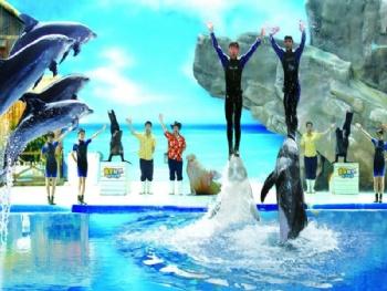 皇家海洋主题乐园(抚顺皇家极地海洋世界)
