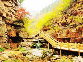 景点预订 景点大全 山东景点大全 潍坊景点大全 青州旅游一票通门票