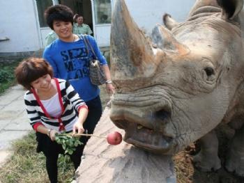 驴友这样评价济南跑马岭野生动物世界 动物很可爱,有很多很珍贵的