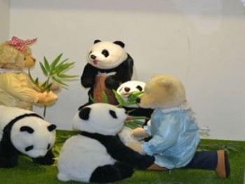 驴友这样评价中国泰迪熊博物馆 好可爱的泰迪熊,一下子就被萌住了