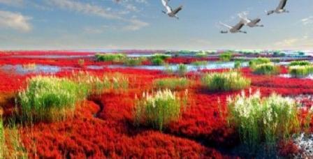 鸳鸯沟红海滩旅游度假区