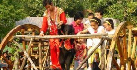 武汉九峰森林动物园门票