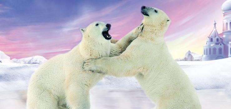 《疯狂海狮总动员》 欢乐海狮王国里,歌舞皇帝皮特,魔法达人比利,多情