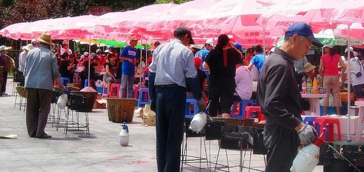 东钱湖陶公岛景区温馨提示 景区烧烤具需要另租凭.  爱护景区卫生.