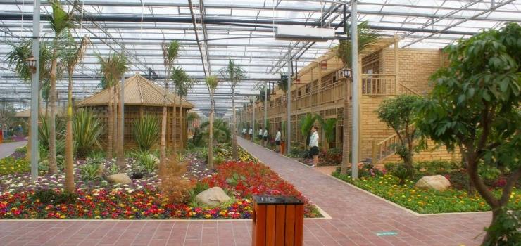 20万农家乐设计效果图-雅林现代农业园旅游