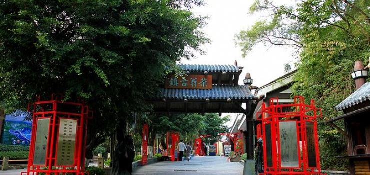 华侨城旅游度假村组织结构