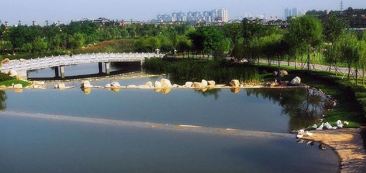 曲江池遗址公园观光小火车