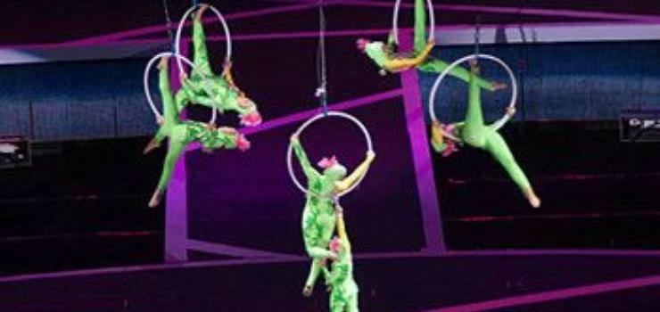 吴桥杂技大世界—滑稽动物园:以各种动物表演为主