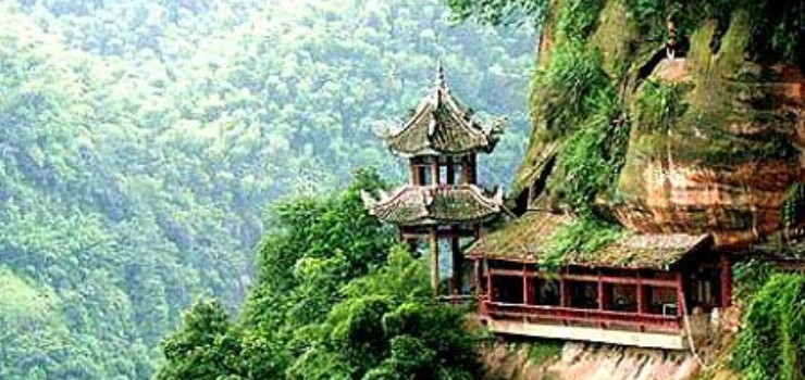 动物资源丰富的雅安市北八公里处的碧峰峡风景区内