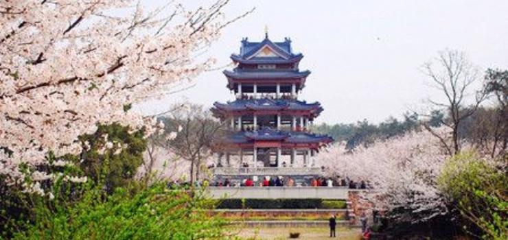 建筑 旅游 塔 740_350