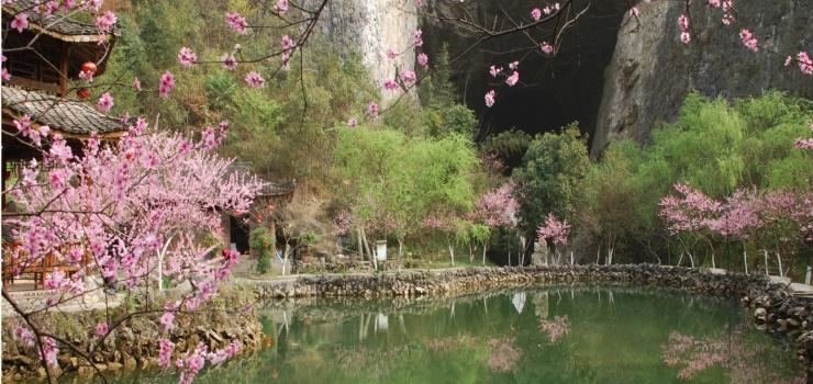 桃花林手绘景观